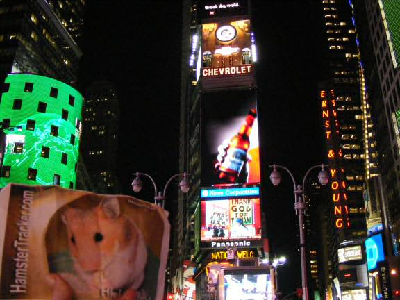Extreme HamsterTrackin' by Katie in the New York, USA.