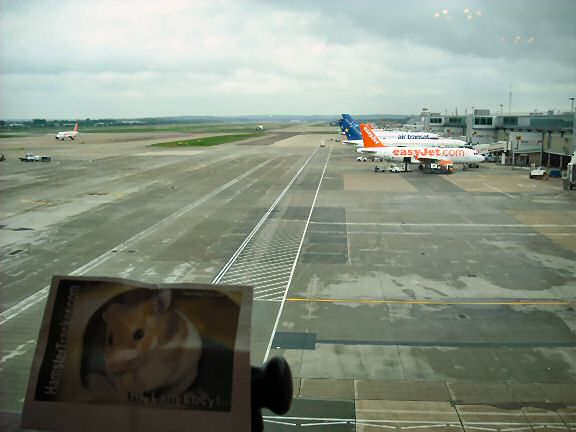 Extreme HamsterTrackin Gatwick Airport London, UK by Marion.