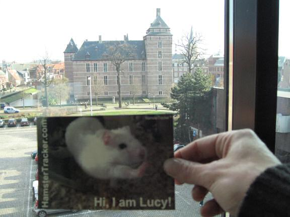 Extreme HamsterTrackin' in Turnhout, Belgium.